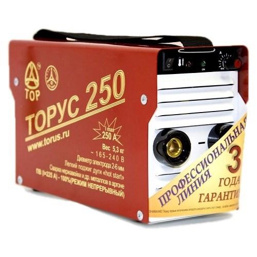 Инвертор Торус 250 Экстра - фото 6408